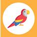 ajandek tarsas egyedi tarsasjatek ikon gyerek 03 papagaj 75